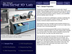 Bacterial ID App